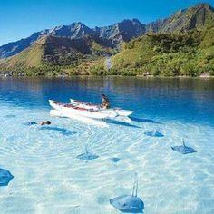 Taman Wisata Alam Laut Pulau Weh Sabang by backpacker indonesia