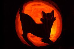 Cat Pumpkin from Halloween carved from a stencil found online. The strange light effects around the carved openings are because the pumpkin had to be covered with cellophane to keep the wind out. It was very cold, and snowing in Boulder on this Halloween. Cat Pumpkin Carving, Halloween Pumpkin Stencils, Disney Pumpkin Carving, Pumpkin Carving Patterns, Halloween Pumpkins, Day Of Dead Tattoo, Pumpkin Carver, Cat Light, Halloween Cat