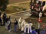 Nice terror attack: Lorry driver who killed 84 on French Riviera was criminal well known to police