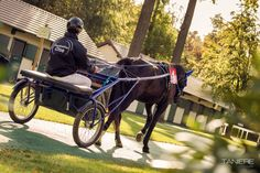 Hippodrome, Oise, Courses, Riding Helmets, Images, Animals, Beginning Sounds, Tourism, Animales