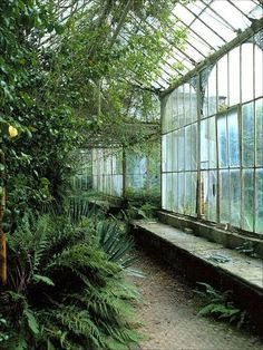 Wentworth Castle Conservatory in South Yorkshire, England.