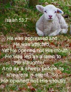 JESUS Revelation 13:8