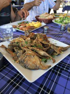 Fresh fish straight from Latsi port,Pafos,Cyprus