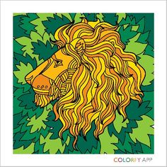 I love lions share if you love lions