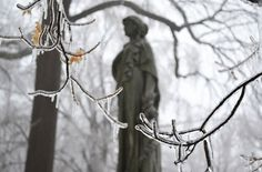 Upstate blogger has high praise for Mount Albion Cemetery