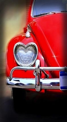 "Love bug - This is sooooo darling!  I wish that could be an option for new ""bugs""!"