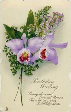 BIRTHDAY GREETINGS  2 orchids, lilac http://www.pinterest.com/dreamcraft/vintage-cards-images/