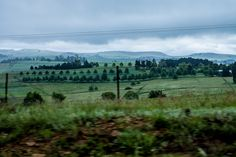 Beautiful Sites, Beautiful Places, Midland Meander, South Afrika, Kwazulu Natal, Wildlife Conservation, Local Events, Places To See, Travel Photography