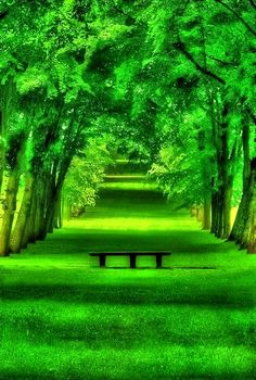 Spring Green, Chamrande, France