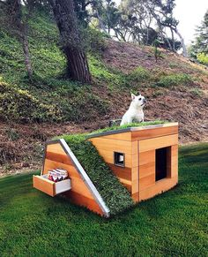 Cool DIY Dog House Plans Anyone Can Build DIY Projects There are many options available for you when looking for cool dog houses for your dog. There are many types of dog houses available, and some types a. Fancy Dog Houses, Dog House Plans, Dyi Dog House, Pallet Dog House, Dog Furniture, Cheap Furniture, Luxury Furniture, Furniture Decor, Dog Rooms