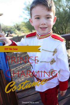 A no sew prince charming costume, the perfect little boy Halloween costume from Cinderella.