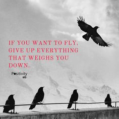 If you want to fly give up everything that weighs you down. #positivitynote #positivity #inspiration