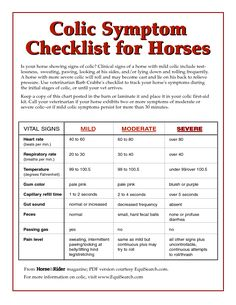 Colic Symptom Checklist for Horses Colic Symptom Equisearch - something every…