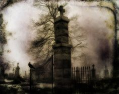 Old Cemetery Gate  by Strange Days