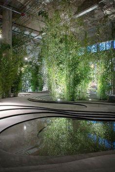 Jardim de inverno com bambus.  Fotografia: http://www.decorfacil.com                                                                                                                                                                                 Mais                                                                                                                                                                                 Mais