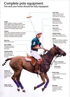 Decided to saddle up and play #polo?! Learn your #equipment with this Living Polo #infographic...