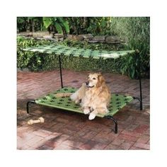 1000 ideas about raised dog beds on pinterest dog beds - Outdoor dog beds with canopy ...