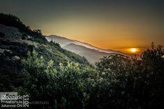 Californian Sunset by JohannesOehl  sunset Brushes California Mountains North America Orange Sun Tree Trees USA United States United Sta