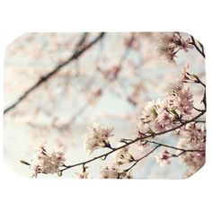 KESS InHouse Japanese Blossom Placemat found on Polyvore