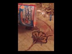 Yoreganics Stain remover cleaning red punch and chocolate off of a wool rug. Magic!