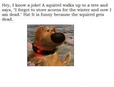 It's funny cuz a squirrel got dead