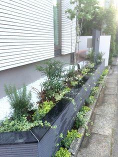 植栽で華やかに彩られた玄関花壇