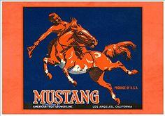 'Mustang Brand' A Beautiful A4 Glossy Art Print Taken Fro... https://www.amazon.co.uk/dp/B076YBJ8XJ/ref=cm_sw_r_pi_dp_x_hrh9zbP45XX27