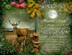 "Book of Shadows Moon:  ""September: Hazel Moon,"" by Angie Latham. It makes a lovely Moon page for a Book of Shadows."
