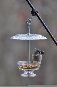 the garden-roof coop: DIY Bird-Feeders and More!