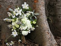 white clematis bouquet