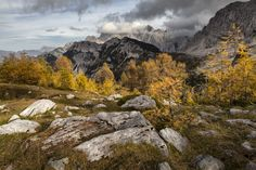 Slemenova Špica is an alpine meadow above 1,900 m that offers great views of the Julian Alps