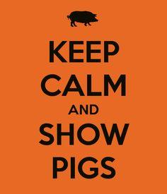 KEEP CALM AND SHOW PIGS. Another original poster design created with the Keep Calm-o-matic. Buy this design or create your own original Keep Calm design now. Pig Farming, Backyard Farming, Urban Farming, Backyard Chickens, Country Farm, Country Life, Country Girls, Country Living, Country Style