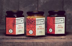 Nahuel Honey by Juanjo Marnetti, via Behance