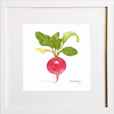 Radish Print Irish Design, Framed Prints, Art Prints, Pigment Ink, Colour Schemes, Watercolor Paper, Wooden Frames, All The Colors, Greeting Cards