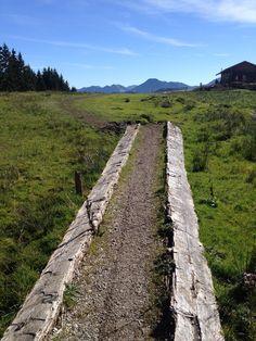 MTB trail: Aueralm (near Tegernsee)