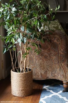 Turn an old garbage into a Rope Planter Basket as easy DIY decor for your houseplants.