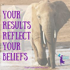 Your results reflect your beliefs - Elayna Fernandez ~ The Positive MOM