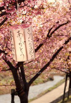 spring leaves by jyoujo.deviantart.com on @DeviantArt