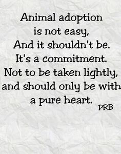 1000+ Animal Rescue Quotes on Pinterest | Animal Rescue, Cat ...