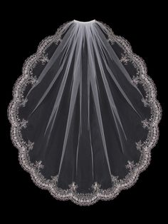 Fingertip Bridal Veil with Silver Embroidery and Rhinestones