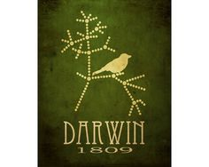 Darwin Poster by meganlee, on Etsy