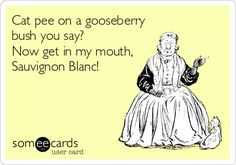 Cat pee on a gooseberry bush you say? Now get in my mouth, #SauvignonBlanc! #sauvblanc #summertimeinaglass