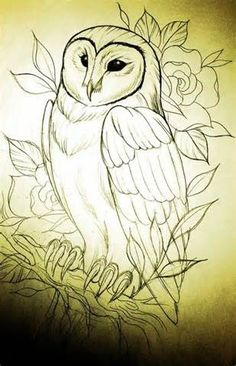 Possible owl tattoo