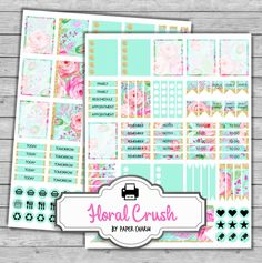 MINT Planner Stickers  Printable Erin Condren by PaperCharmShop
