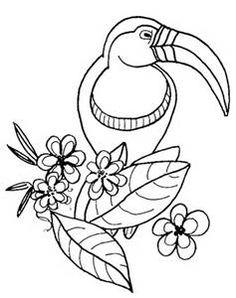 Simple Tarantula Drawing