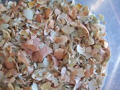 how to feed eggshells to chickens (For their calcium needs)