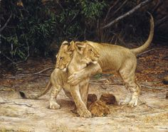 Oil painting by Tony Karpinski - available in prints  063 Lion cubs