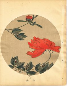 """Japanese antique woodblock print Ito Jakuchu """"Peony from Jakuchu gafu"""""""