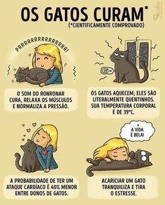 Amo gatinhos Veja este link >> http://www.universodegatos.com/gato-siames/ ~ O Gato Siames é uma raça natural, a sua coloração é o resultado de uma mutação genética. Ele tem contribuído para muitas outras raças... descubra agora.