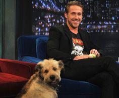 George (Adopted by Ryan Gosling)